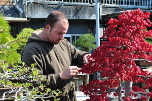Owen Reich in Japan working on a Maple