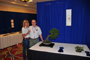 A winning team at the BSF 2013 Convention Spring Breeze Mike and Louise won Best Display with this Black Pine owned by Louise and the beautiful Companion plant owned by Mike.