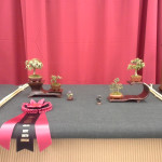 "Best Shito Bonsai 2"" Lee Vanderpoole's Display"